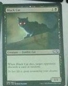 Black-Cat-M15-Visual-Spoilers